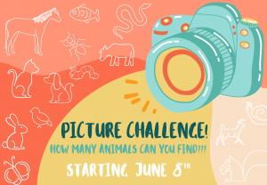 Scavenger Hunt Picture Challenge